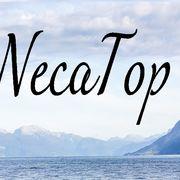 NecaTop